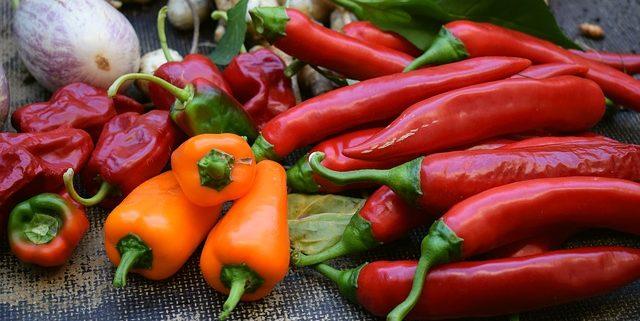LA Garden Tips